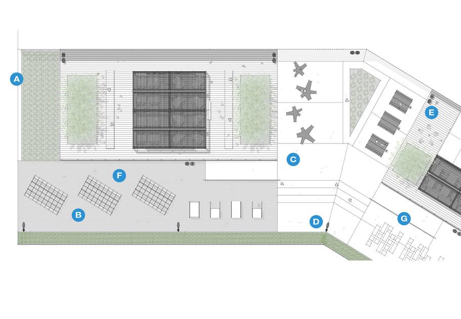 Escuela primaria - Plaza