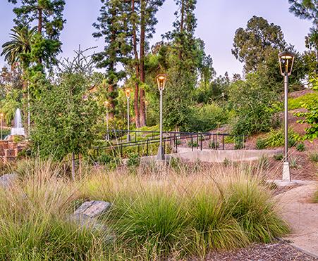 Artículo: ProyectoHillcrest Park