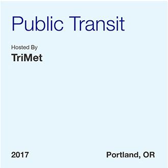Tránsito público -Informe profesional