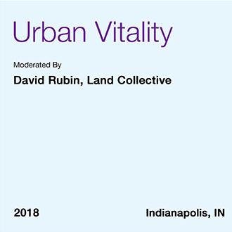Vitalidad urbana -Informe profesional